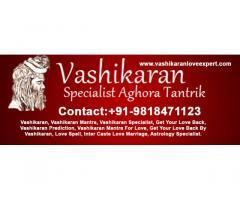 IN Chennai   Famous Pandit Vikas Shastri